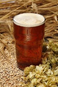 Beer genie beer hops barley