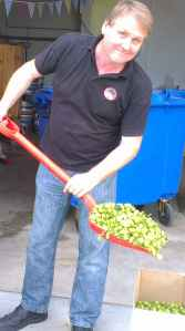 Mad Cat Peter shovelling fresh green hops!